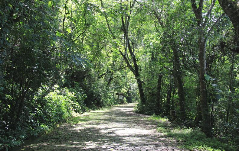 parque3, Diário de viagem: Parque Arthur Thomas