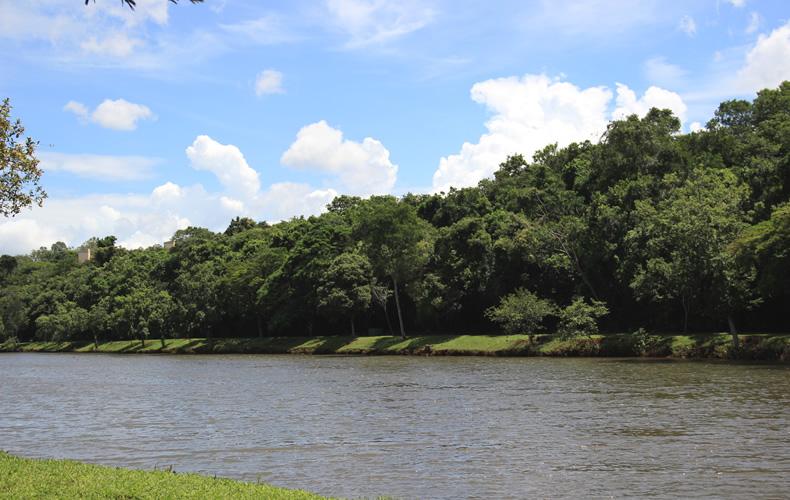 parque6, Diário de viagem: Parque Arthur Thomas