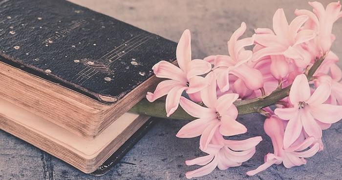 5 livros que você precisa ter na sua estante