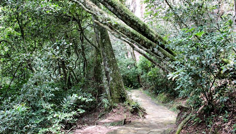 pontagrossa4-7, Diário de Viagem: Parque Estadual Vila Velha