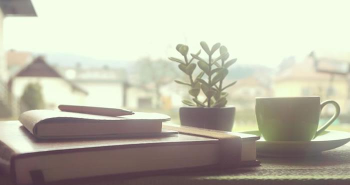 Um lugar para conhecer em BC: Sebo Opção Leitura
